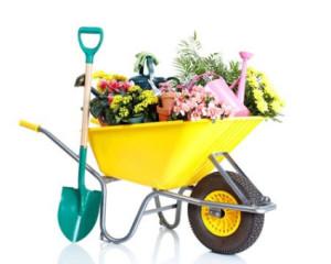 workman-canopies-ute-business-garden-425x340